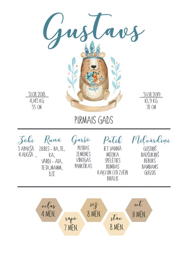 Infografika - Lācis