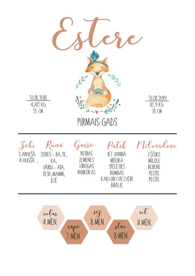 Infografika - Lapsa